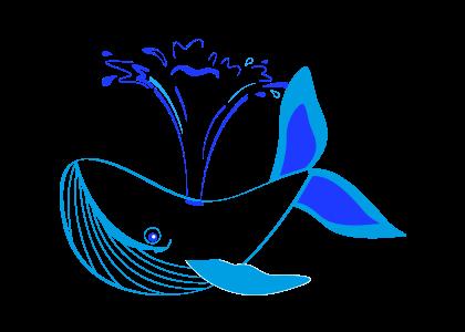 5 китов